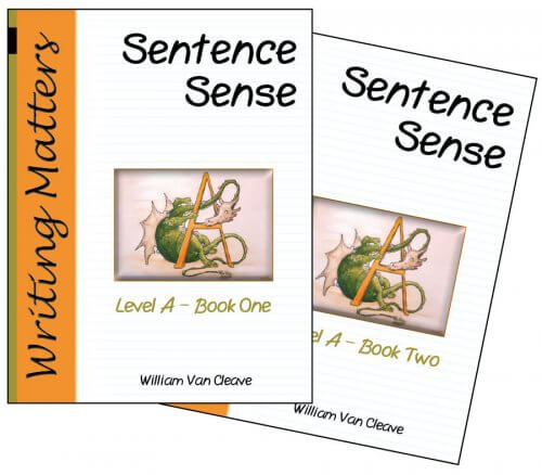 Sentence Sense Level A