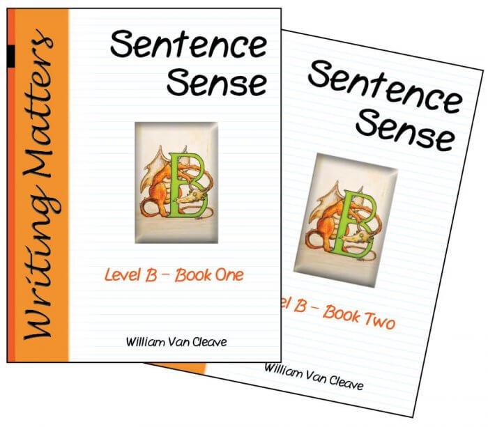 Sentence Sense Level B