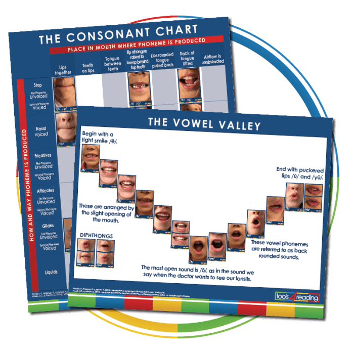 Consonant Chart & Vowel Valley Poster Set