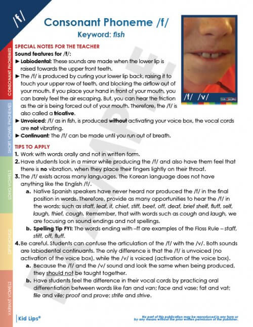 Kids Lips Instructional Guide & Kid Lips Cards (together)